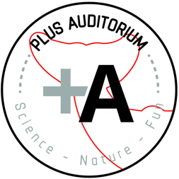 Logotipo Plus Auditorium